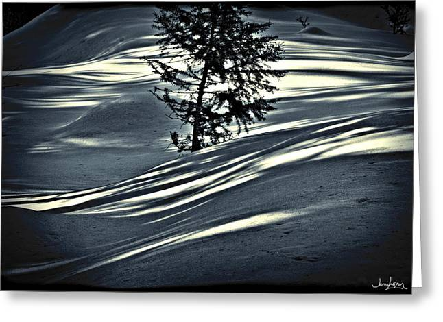 Greeting Card featuring the photograph Light On The Snow by Janie Johnson