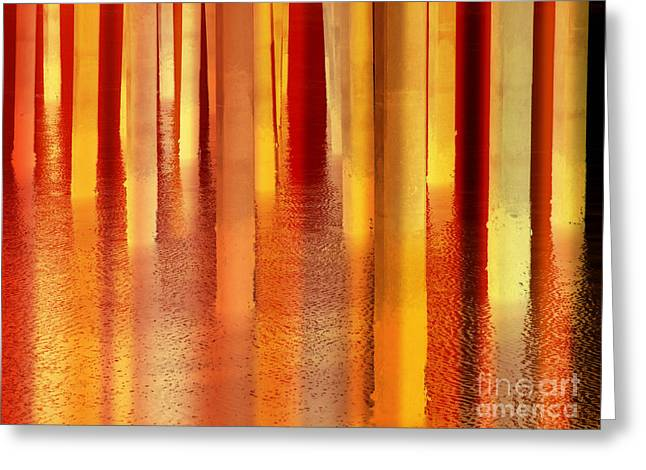 Light On The Water Greeting Card by Robert Ball