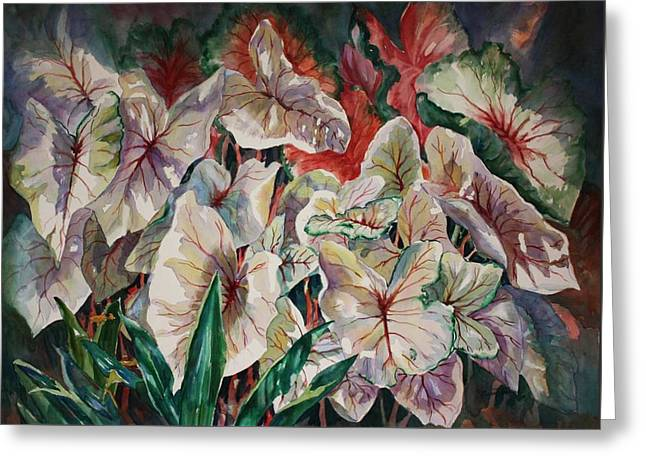 Light Play Caladiums Greeting Card