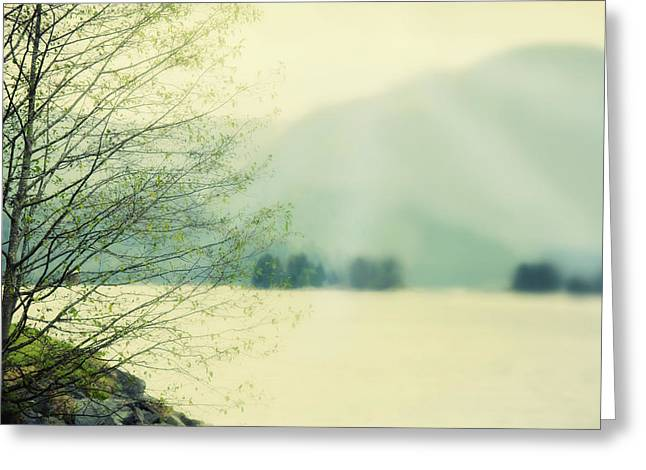 Light Streams Over A Mountain Greeting Card by Roberta Murray