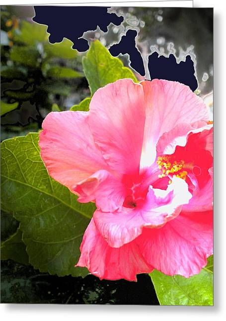 Lighted Flower Greeting Card by Maureen Kyle