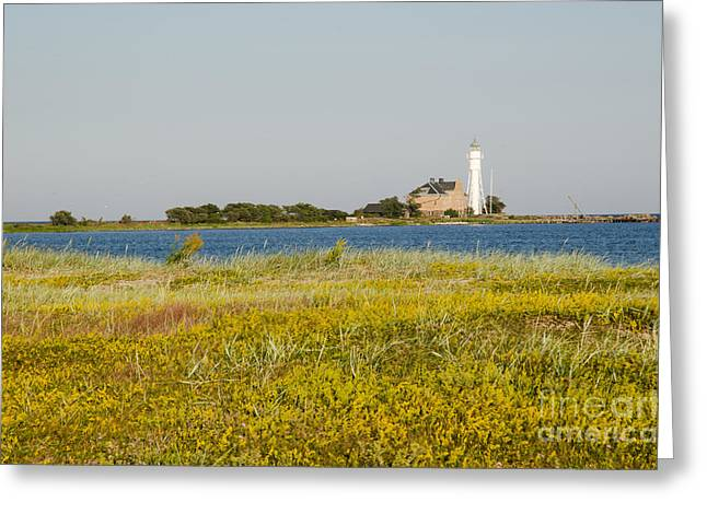 Lighthouse At Yellow Coast Greeting Card