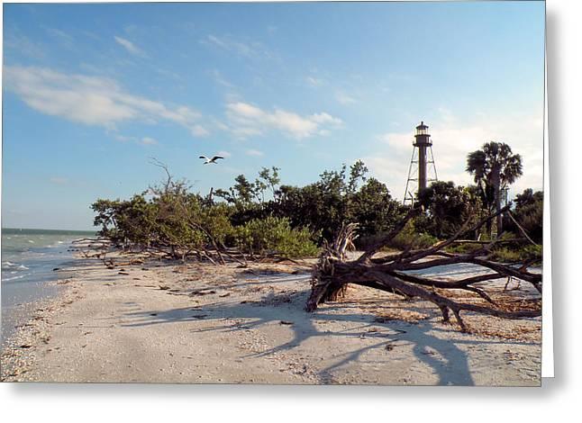 Lighthouse Beach Greeting Card by Rosalie Scanlon