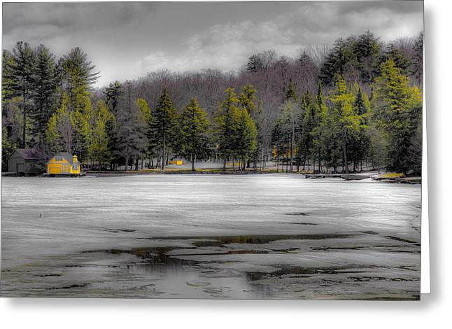Lighthouse On Frozen Pond Greeting Card by David Patterson
