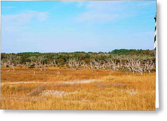 Lighthouse On The Coast, Cape Hatteras Greeting Card by Panoramic Images