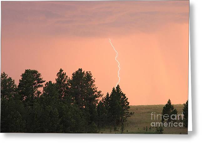 Greeting Card featuring the photograph Lighting Strikes In Custer State Park by Bill Gabbert