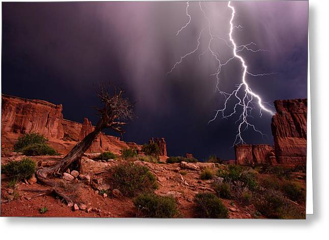 Lighting With A Mesquite Tree Greeting Card by Raul Touzon