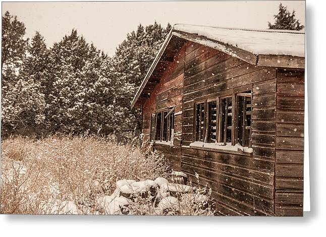 Greeting Card featuring the photograph Snowing Softly by Shirley Heier