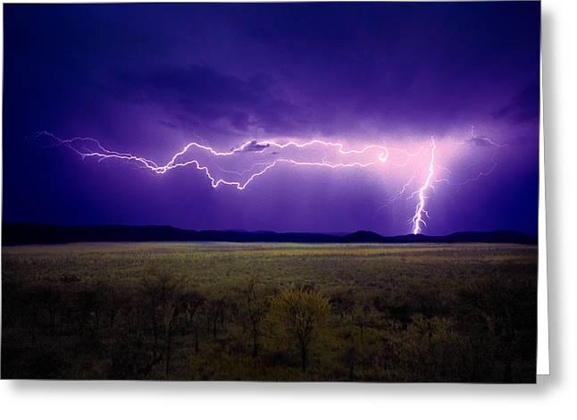 Lightning Serengeti Greeting Card