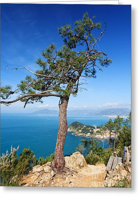 Greeting Card featuring the photograph Liguria - Tigullio Gulf by Antonio Scarpi