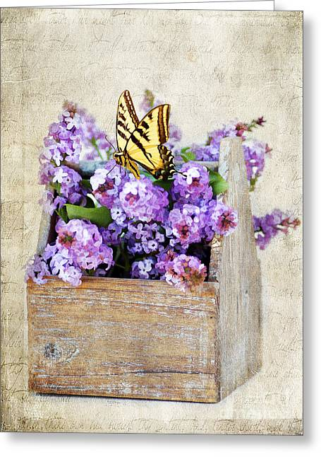 Lilacs And The Butterfly Greeting Card by Darren Fisher