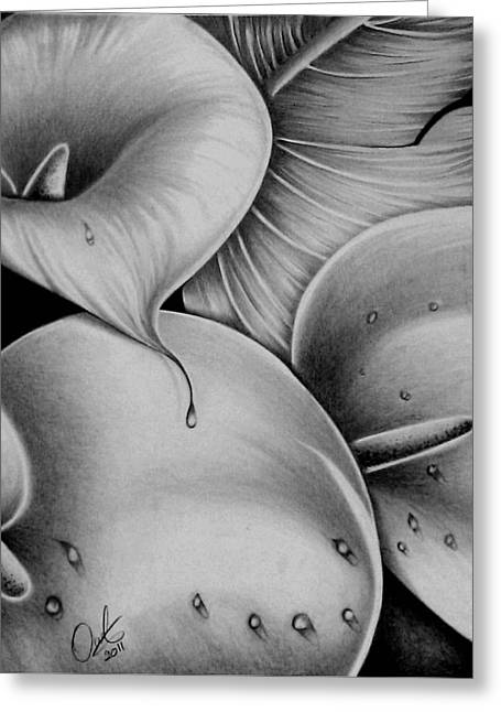 Lilies 3 Greeting Card