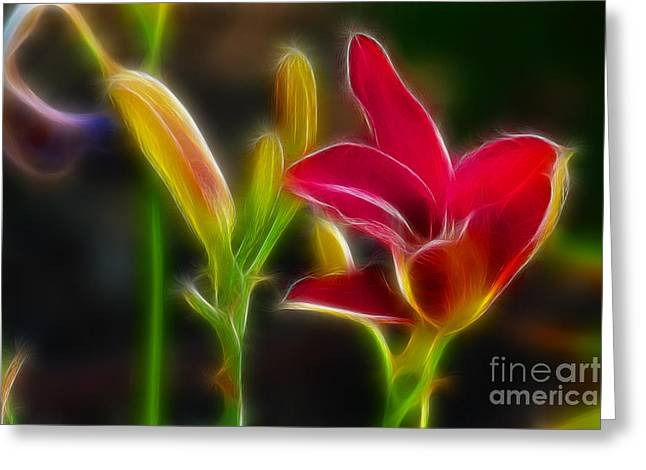 Lilies-6340-fractal Greeting Card by Gary Gingrich Galleries