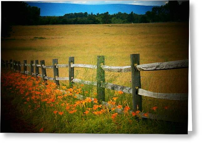 Lilies By The Fence Greeting Card