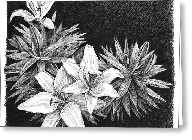 Janet King Greeting Cards - Lilies in pen and ink Greeting Card by Janet King