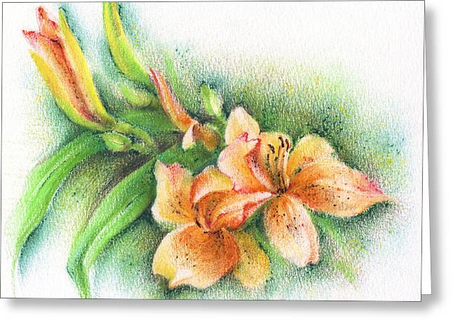 Greeting Card featuring the drawing Lilies by Natasha Denger