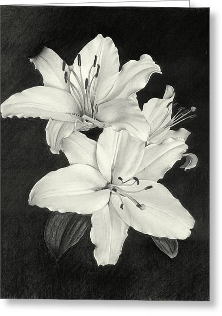 Lilies Greeting Card by Nicola Butt