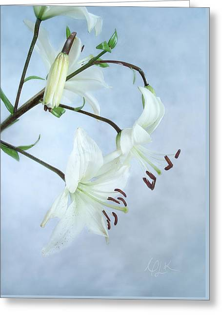 Lilies On Blue Greeting Card by Louise Kumpf