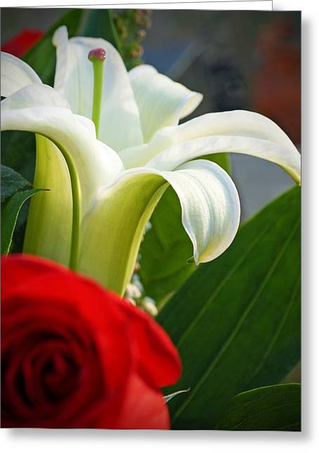 Lilly And Rose Greeting Card by Photographic Arts And Design Studio