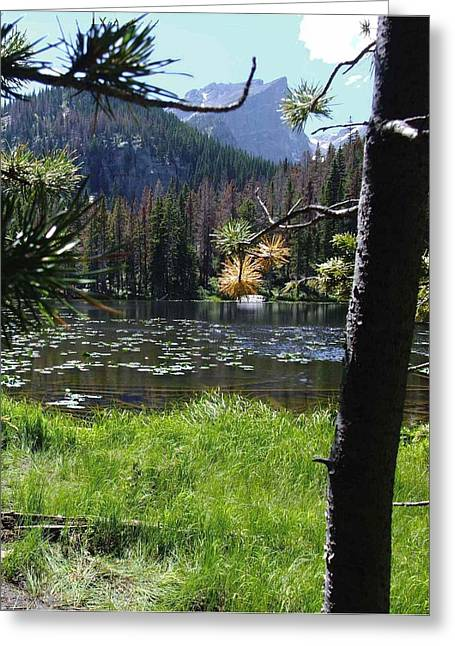 Lilly Lake Greeting Card by Stephen Schaps