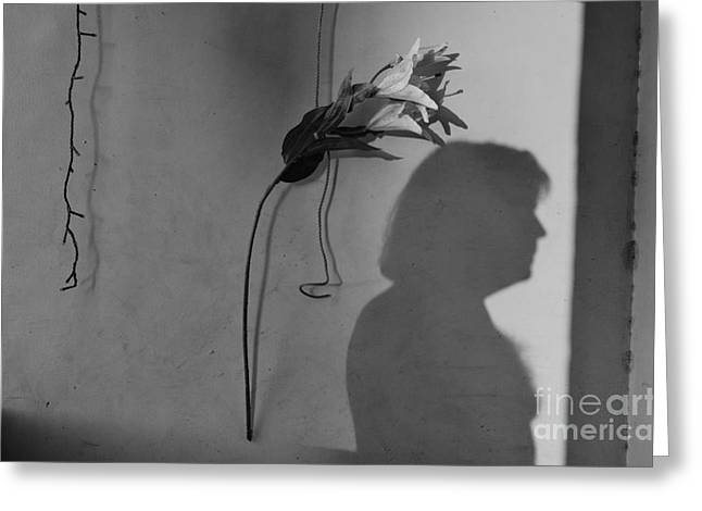 Lily And Male Figure Shadow Greeting Card