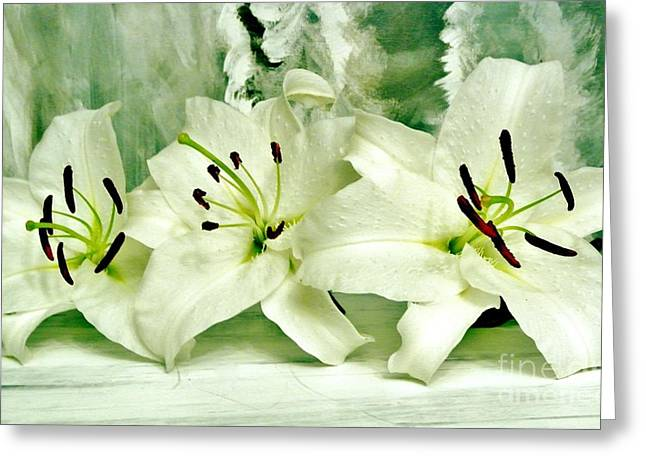 Lily Family Greeting Card by Marsha Heiken