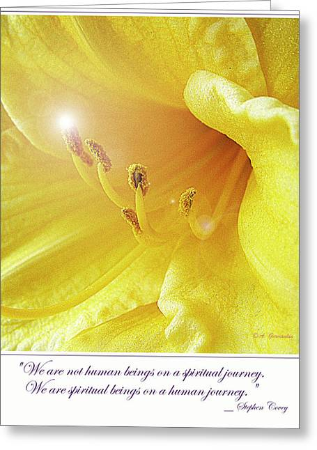 Lily In Full Bloom Greeting Card