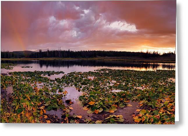 Lily Lake Greeting Card by Leland D Howard