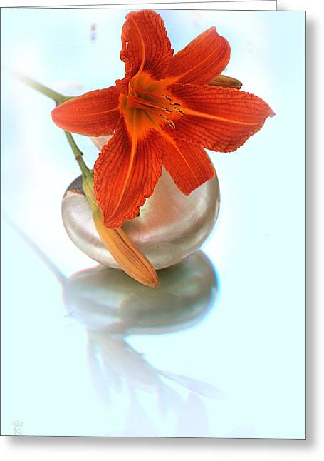 Lily On Sea Shell Greeting Card by Li   van Saathoff