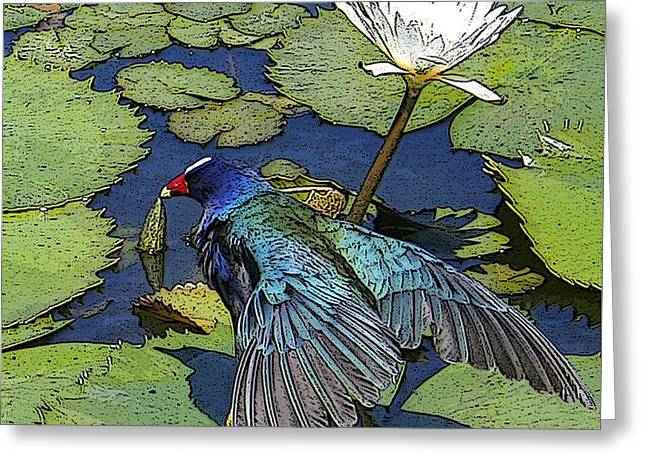 Lily Pad With Bird Greeting Card