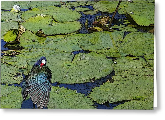 Lily Pad With Bird2 Greeting Card