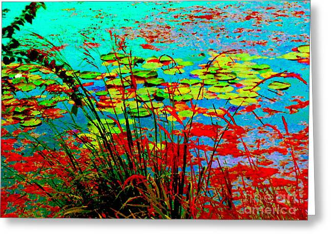 Lily Pads And Reeds Colorful Water Gardens Grasslands Along The Lachine Canal Quebec Carole Spandau Greeting Card by Carole Spandau