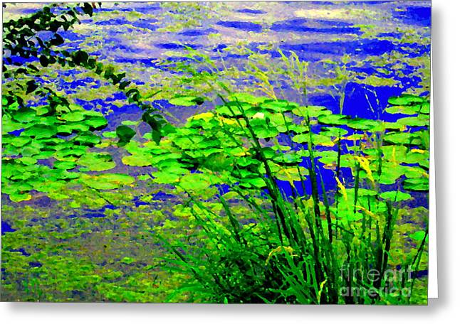 Lily Pads On The Lachine Canal Summer Landscape Scenes Colors Of Quebec Art Carole Spandau Greeting Card by Carole Spandau