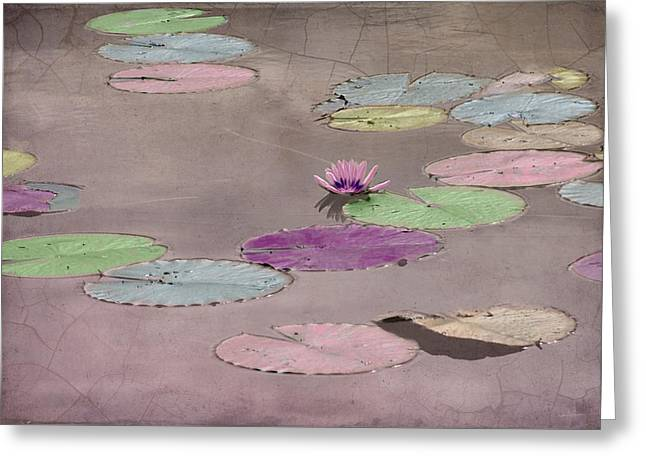 Lily Pods In Pastel Greeting Card