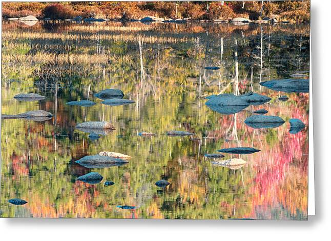 Lily Pond Reflections-white Mountains Nh Greeting Card by Thomas Schoeller