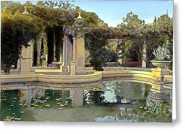 Lily Pond Greeting Card by Terry Reynoldson