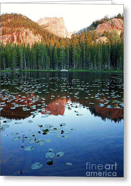 Lilypad Pond With Hallet Peak Greeting Card