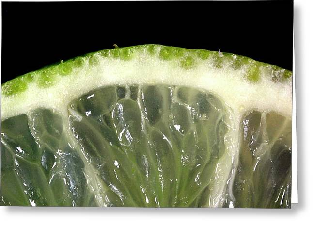 Lime Slice Greeting Card