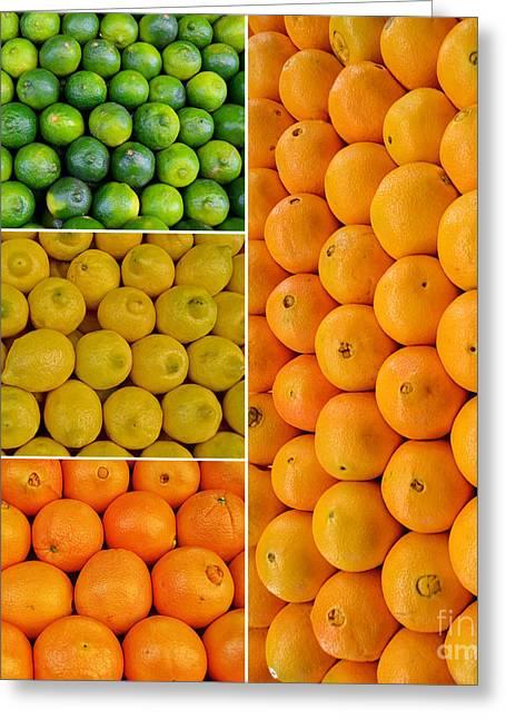 Limes Lemons Oranges Greeting Card by Sabine Jacobs