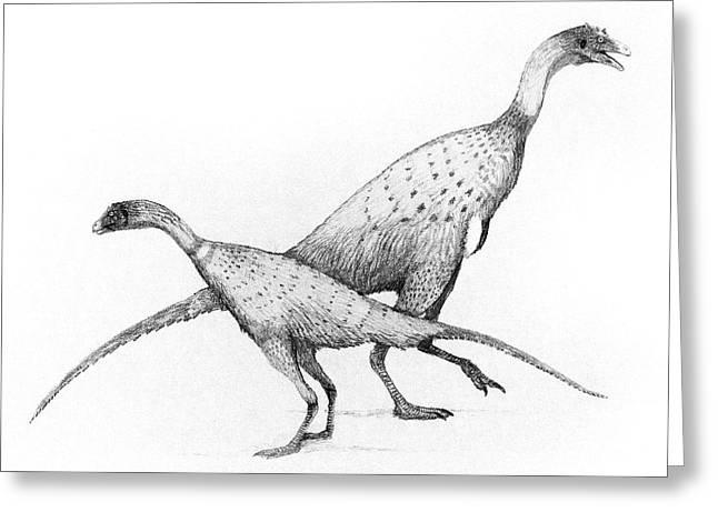 Limusaurus Dinosaurs Greeting Card by Nemo Ramjet