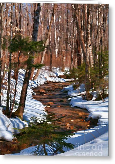 Lincoln Woods Trail Greeting Card