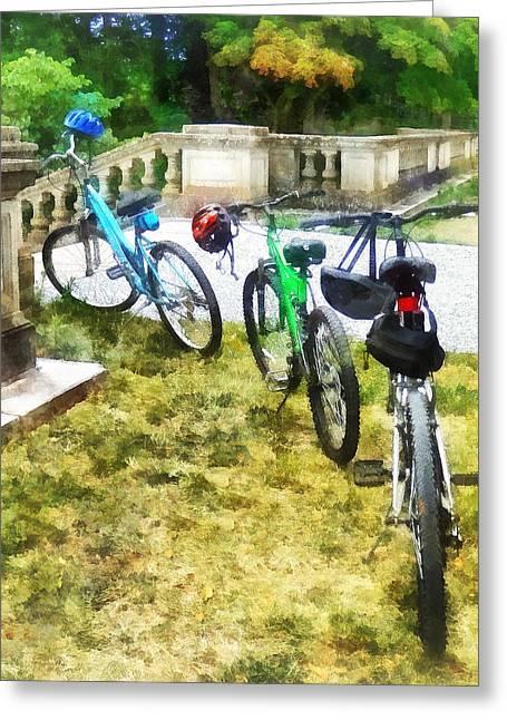 Line Of Bicycles In Park Greeting Card by Susan Savad