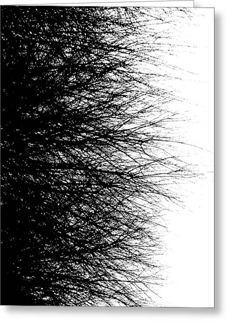Chaotic Abstraction  Greeting Card by Micael Pace