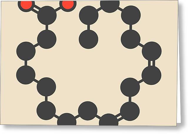 Linoleic Acid Molecule Greeting Card by Molekuul