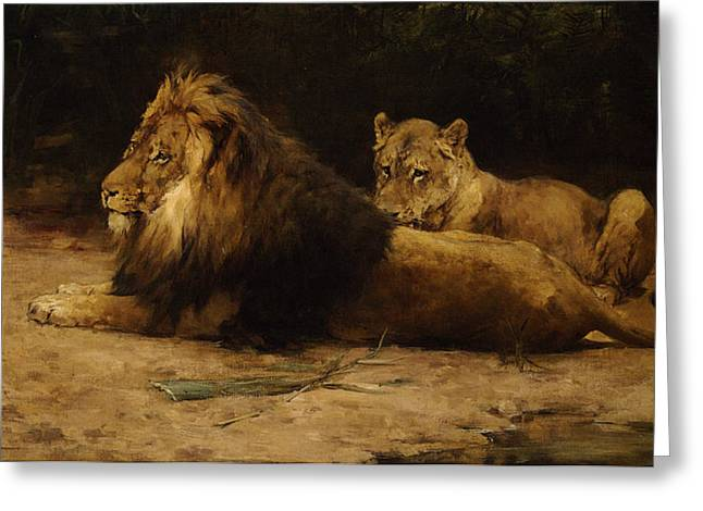 Lion And Lioness At Rest Greeting Card