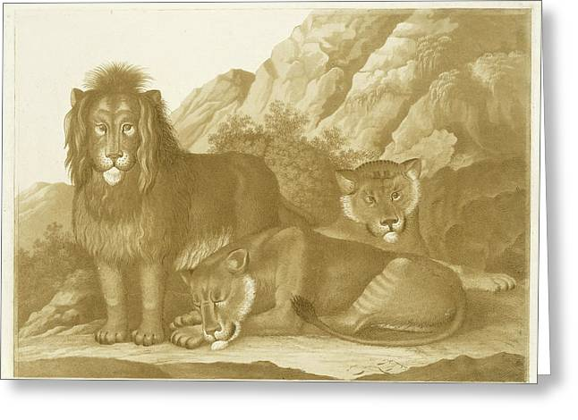 Lion And Two Lionesses, Isaac Van Haastert Greeting Card