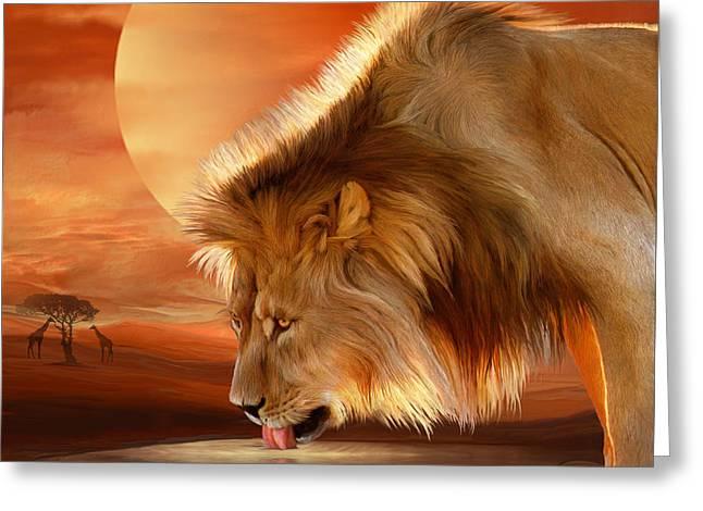 Lion At Sunset Greeting Card