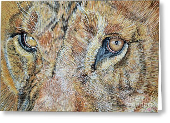 Lion Eyes Greeting Card by Ann Marie Chaffin