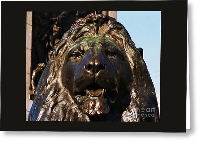 A Lion In Trafalgar Square Greeting Card by Marcus Dagan
