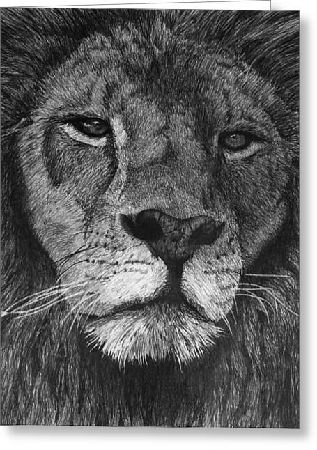 Lion Of Judah Greeting Card by Bobby Shaw